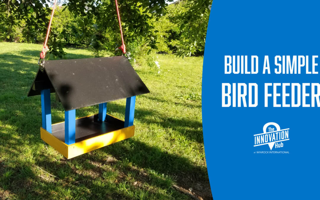How to Build a Simple Bird Feeder